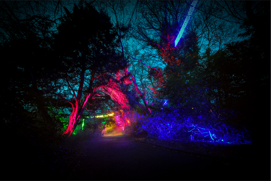 Enchanted Parks  at Saltwell Park – December 2016